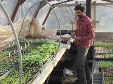 Tim in Greenhouse