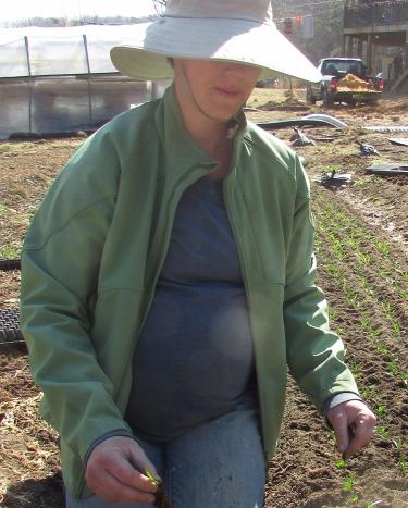 pregnant-planting.jpg
