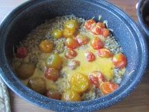 sun oven barley tomatoes